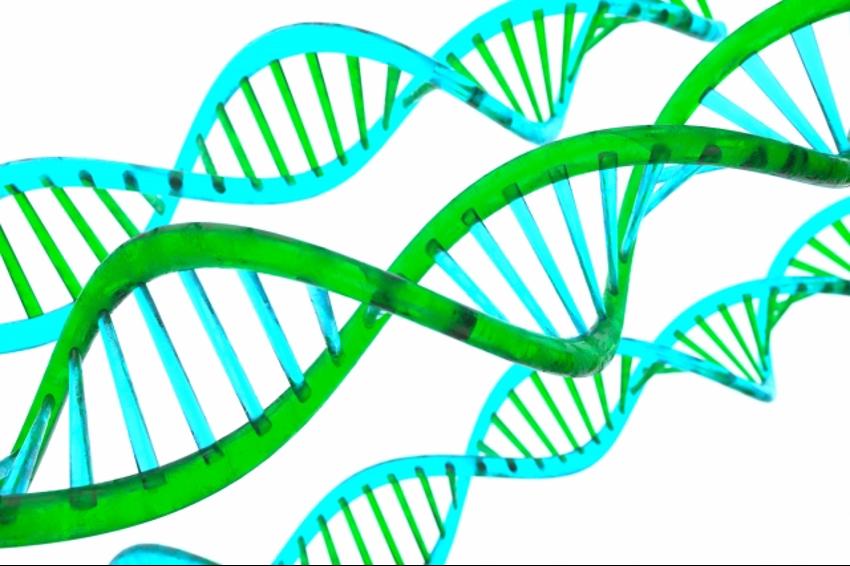 新型出生前診断で分からない障害―性染色体疾患について