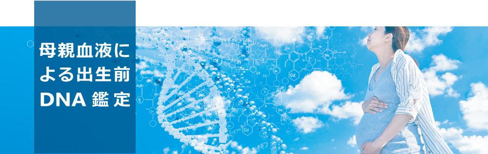 母体血液による出生前DNA鑑定